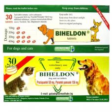 ビヘルドン(ジェネリックドロンタール)犬猫兼用30錠