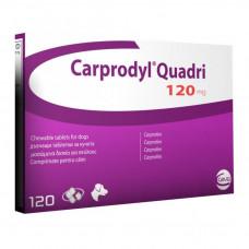 カルプロダイル(カルプロフェン120mg)50錠