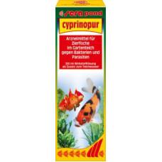 セラポンドシプリノプール250ml