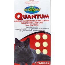 クゥオンタム大型猫用(4kg以上)6錠