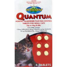 クゥオンタム小型猫用(4kg以下)6錠