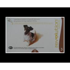 レボリューション小型犬用(5-10kg)6本