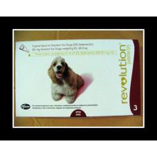 レボリューション中型犬用(10-20kg)6本