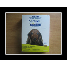 センティネルスペクトルチュアブル小型犬用6個入り(4-11kg)グリーン